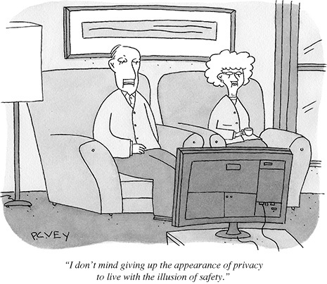 privacytoon